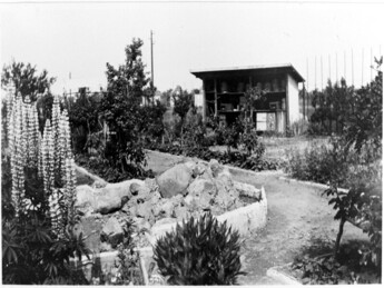 School garden and apiary, c. 1920