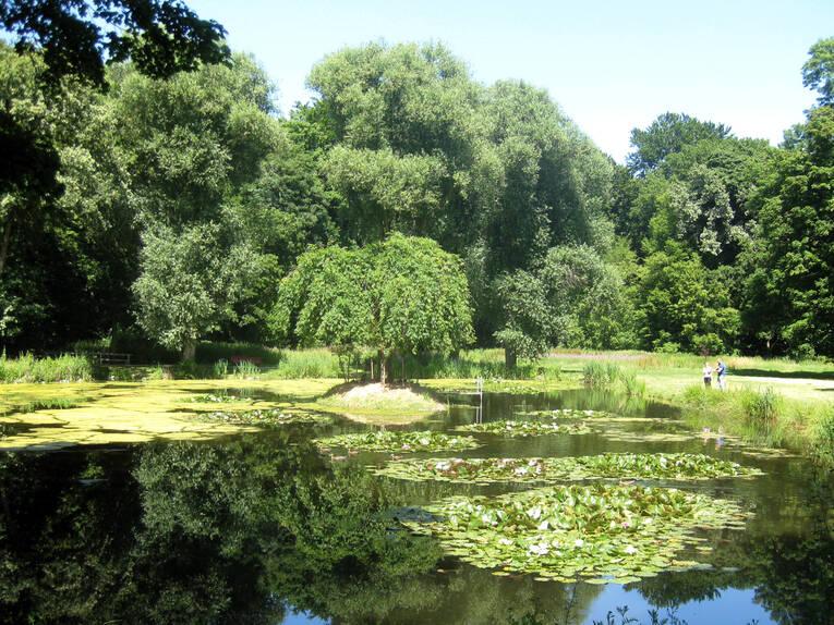 Hinüberscher Garten - Teich | Gärten und Grünes | Galerien ...
