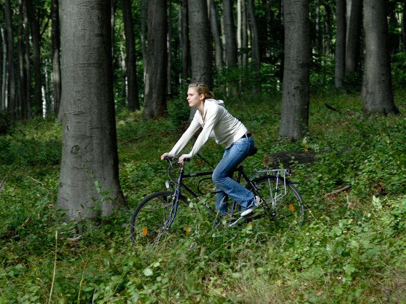 Eine Radfahrerin im Wald