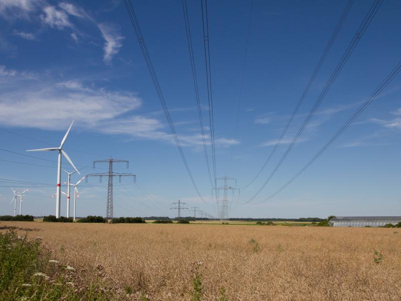 Hochspannungsleitungen sind in der Mitte des Bildes zu sehen. Im Hintergrund zeichnet sich ein Getreidefeld vor blauem Himmel ab. Am linken Bildrand sind sechs Winskraftanlagen des Windparks zwischen Pattensen und Sarstedt zu erkennen.