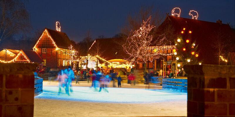 winterzoo hannover 2015 öffnungszeiten