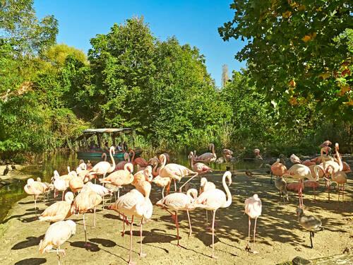 Erlebnis-Zoo (Herbstanfang)
