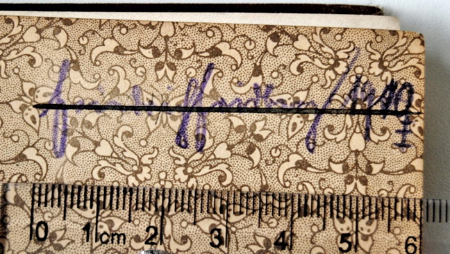 """schwer leserliches Autogramm """"Friedrich[?] Heidberg[?] 1910"""""""