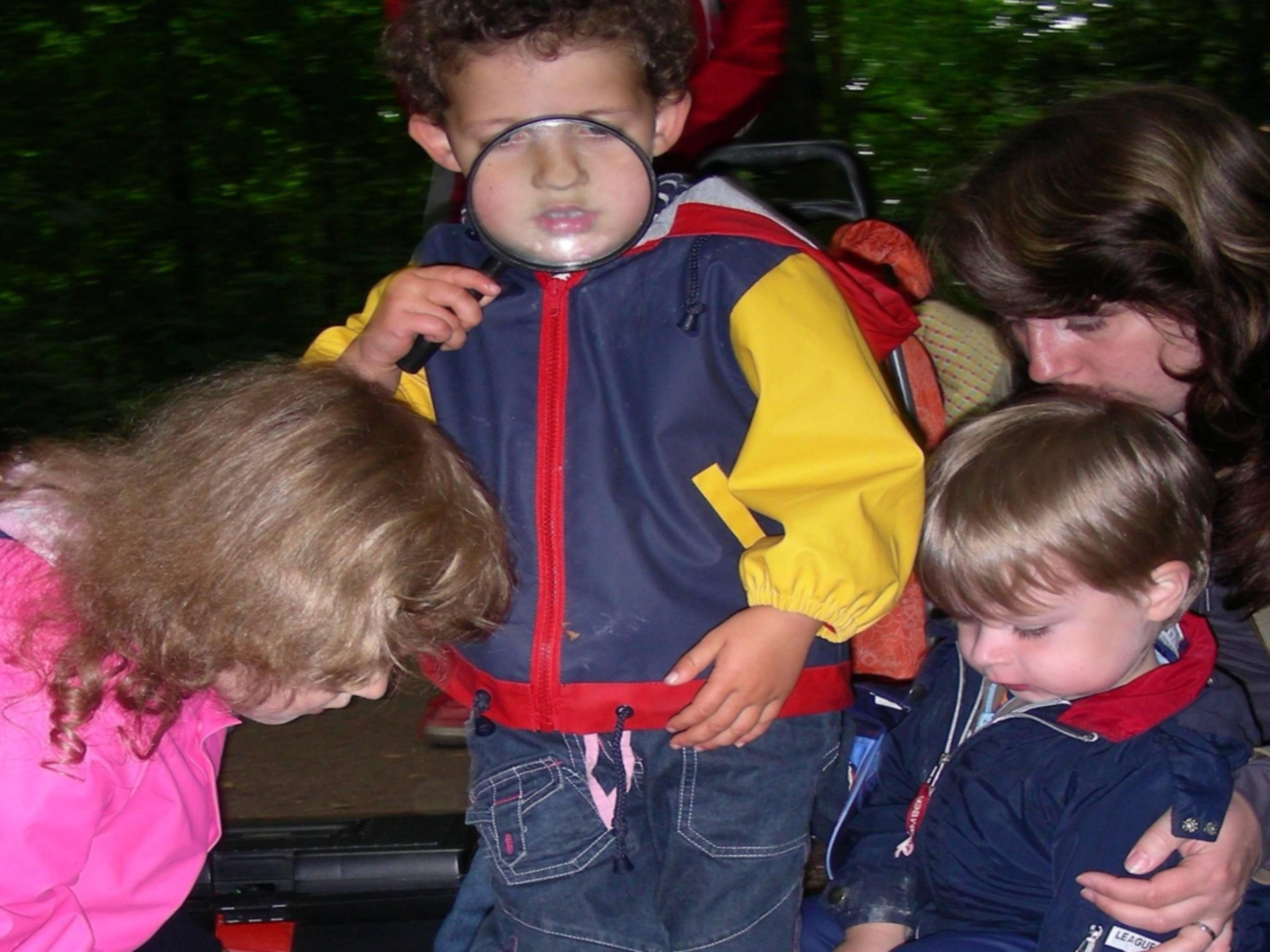 Mehrere kleine Kinder, die mit Lupen und anderen Hilfsmitteln den Waldboden erkunden