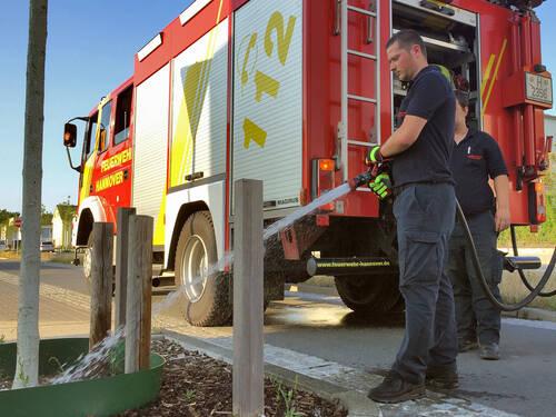 Feuerwehrleute bewässern einen jungen Baum
