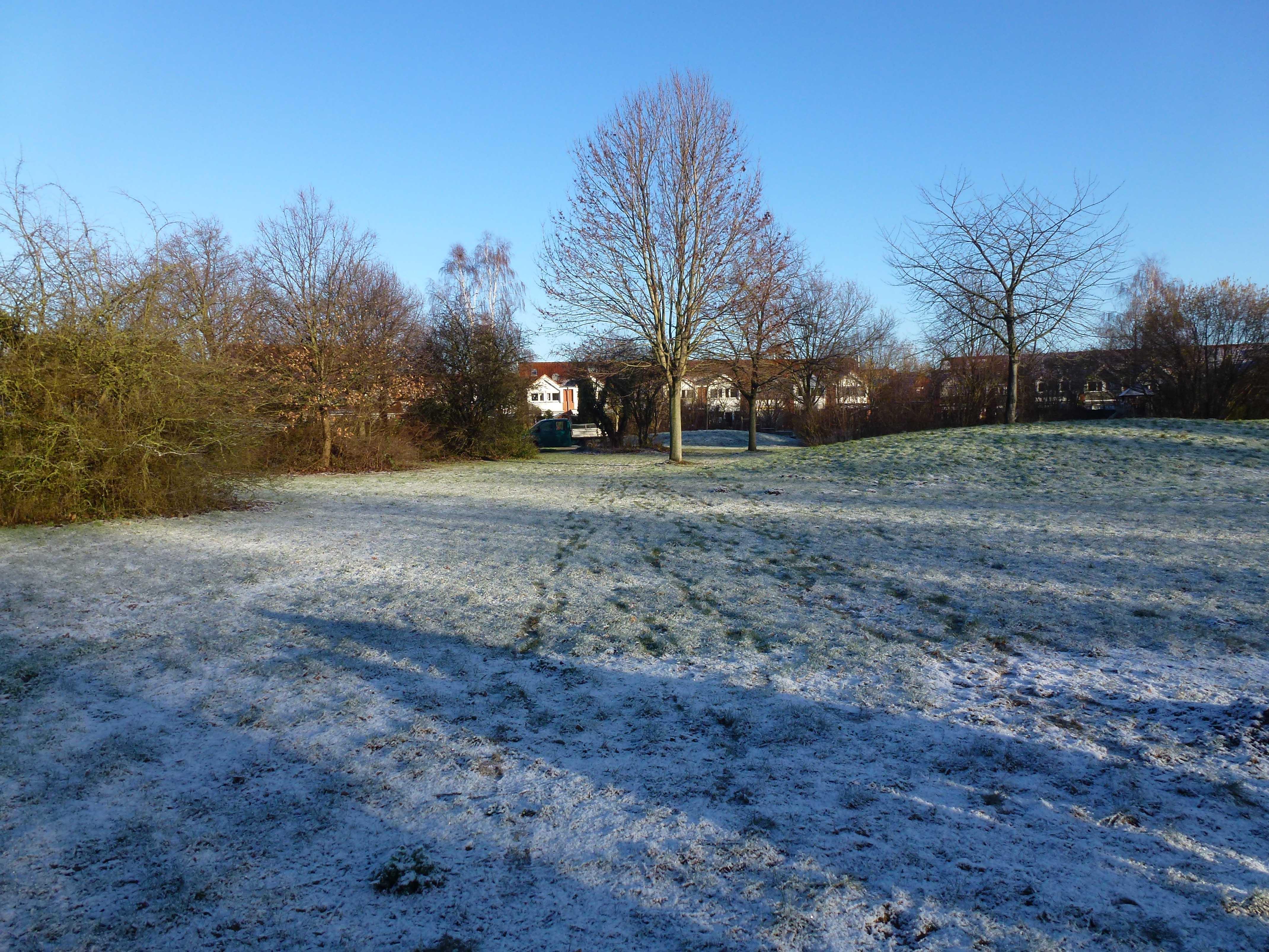 Eine winterliche Grünfläche.