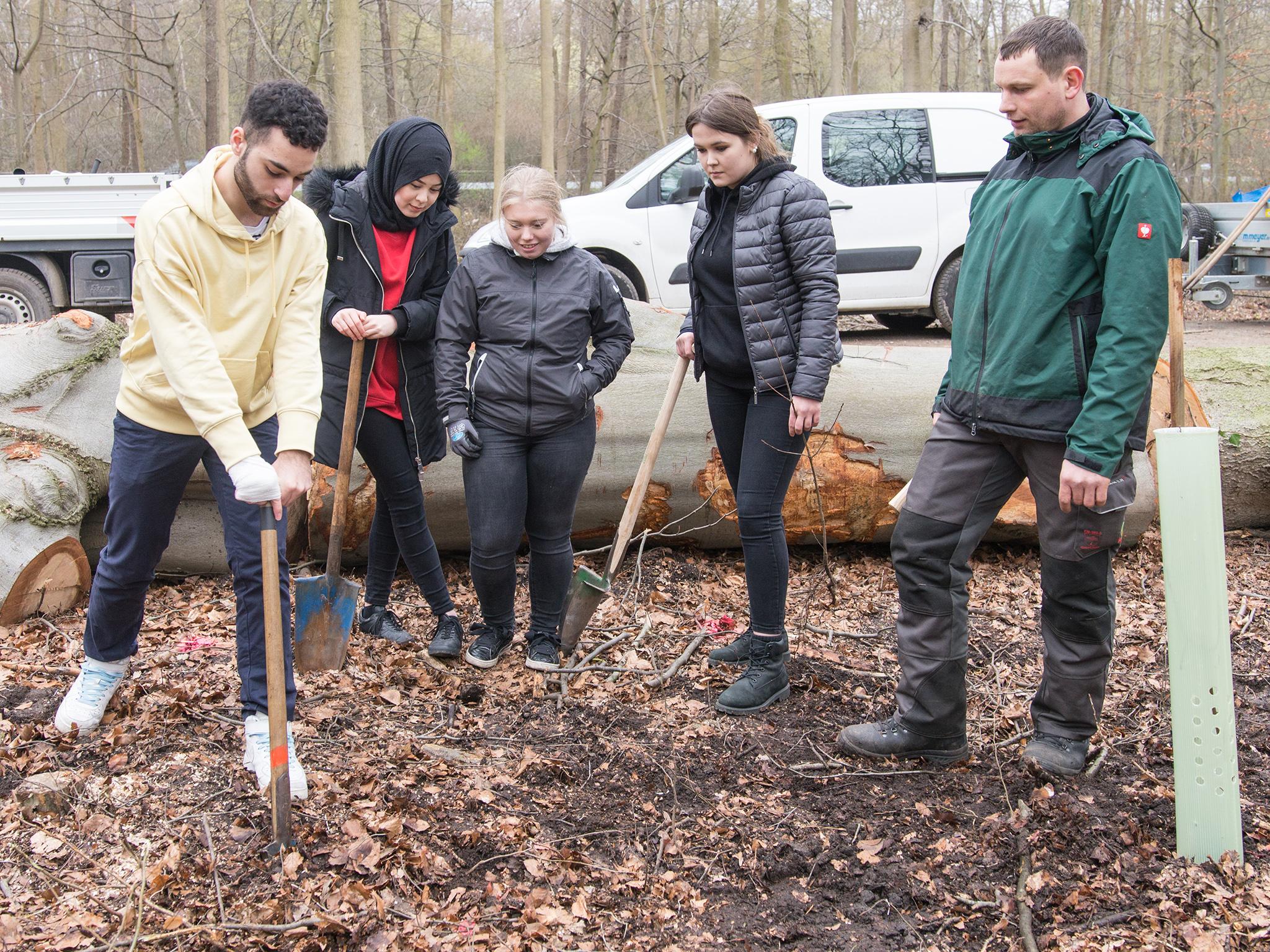 Fünf Personen bei einer Baumpflanzung