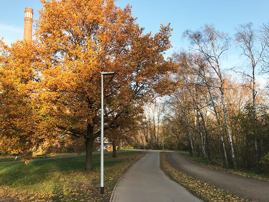 Ein Weg durchs Grüne. An der Seite steht eine Straßenlaterne.