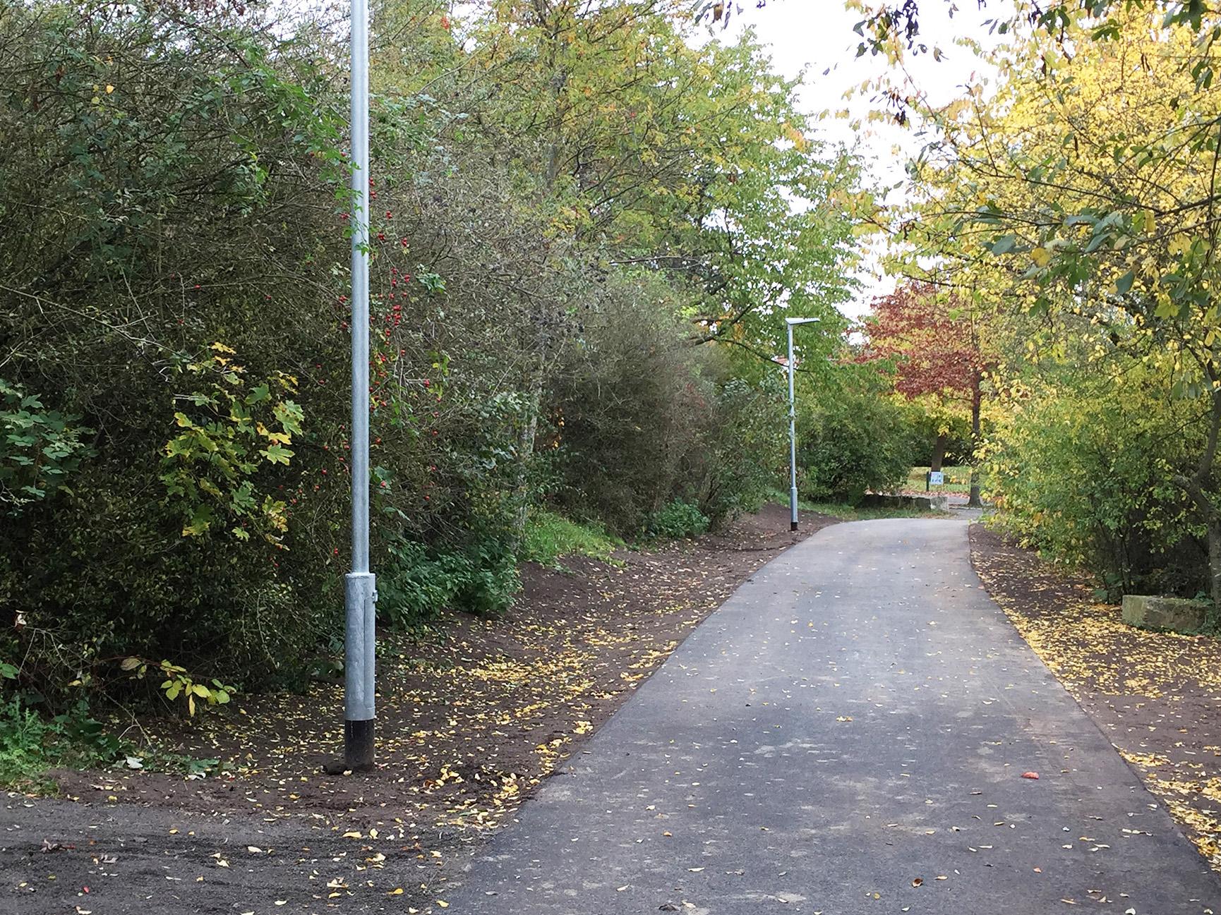 Ein Weg durch einen Grünstreifen.