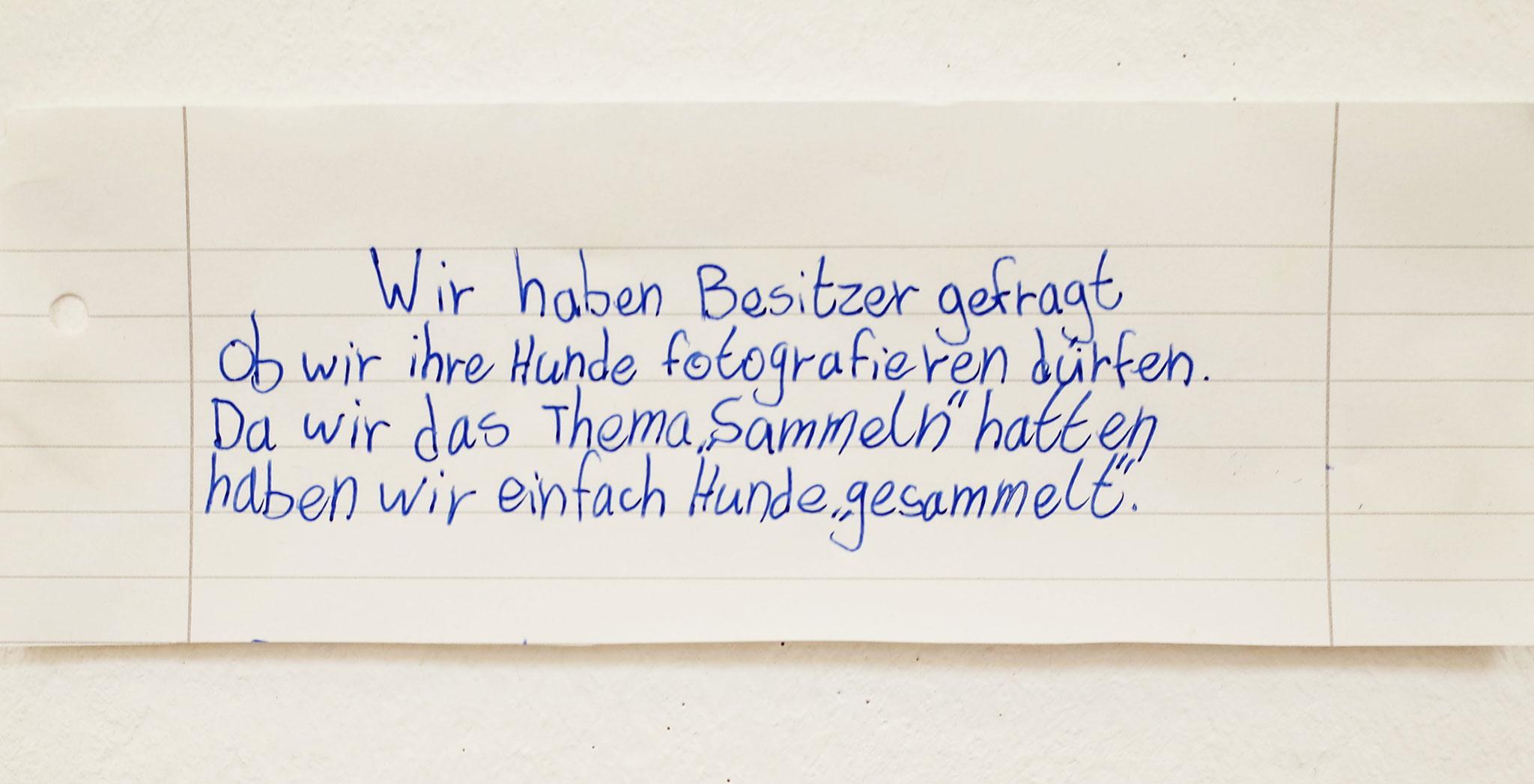 Projektwoche: Suchen und Sammeln (Gymnasium Limmer)