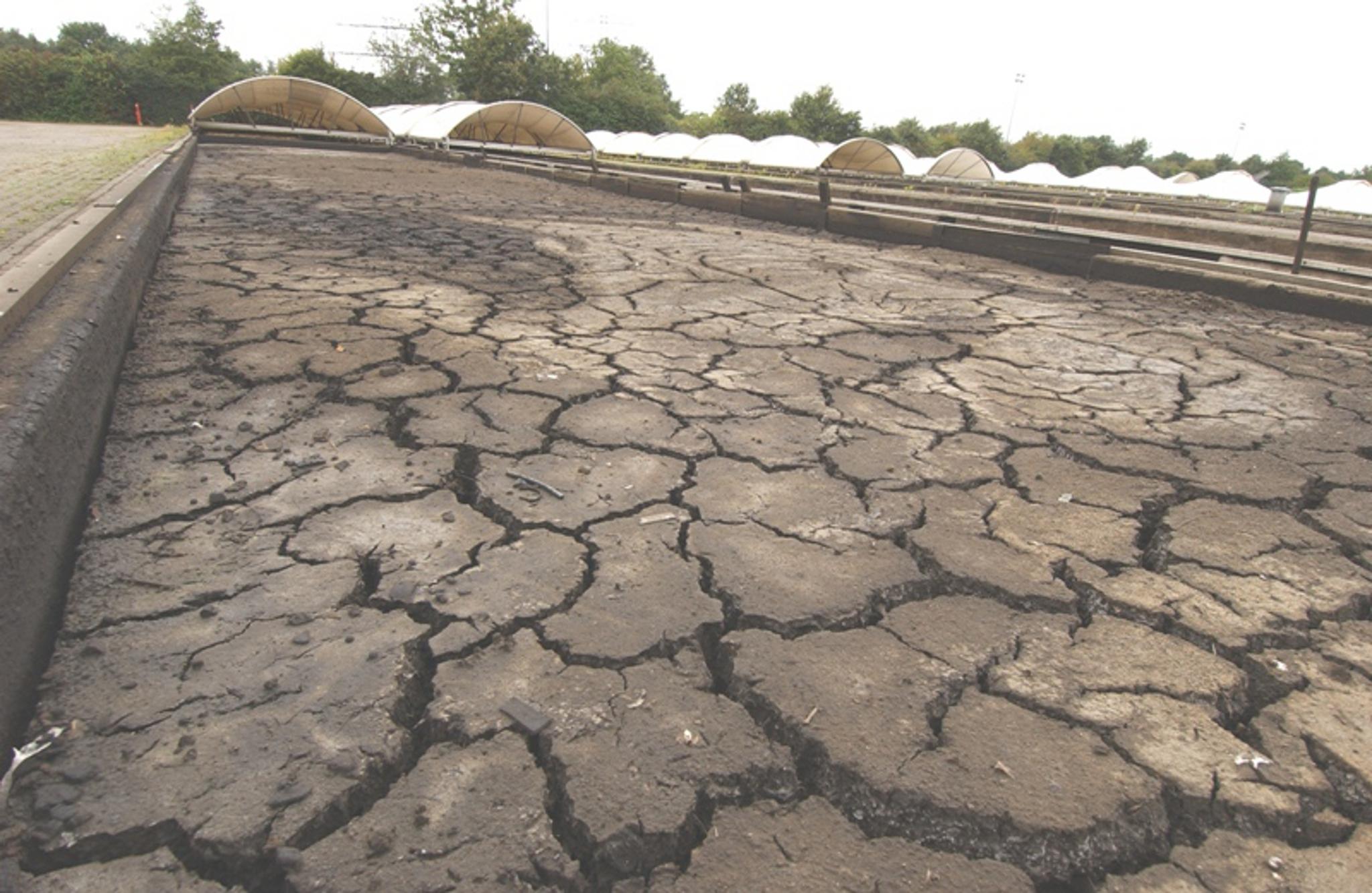 Getrockneter Kanalsand im Zwischenlager Varrelheide