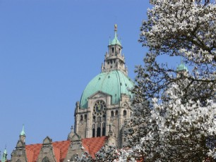 Rathauskuppel vor blauem Himmel mit Magnolien