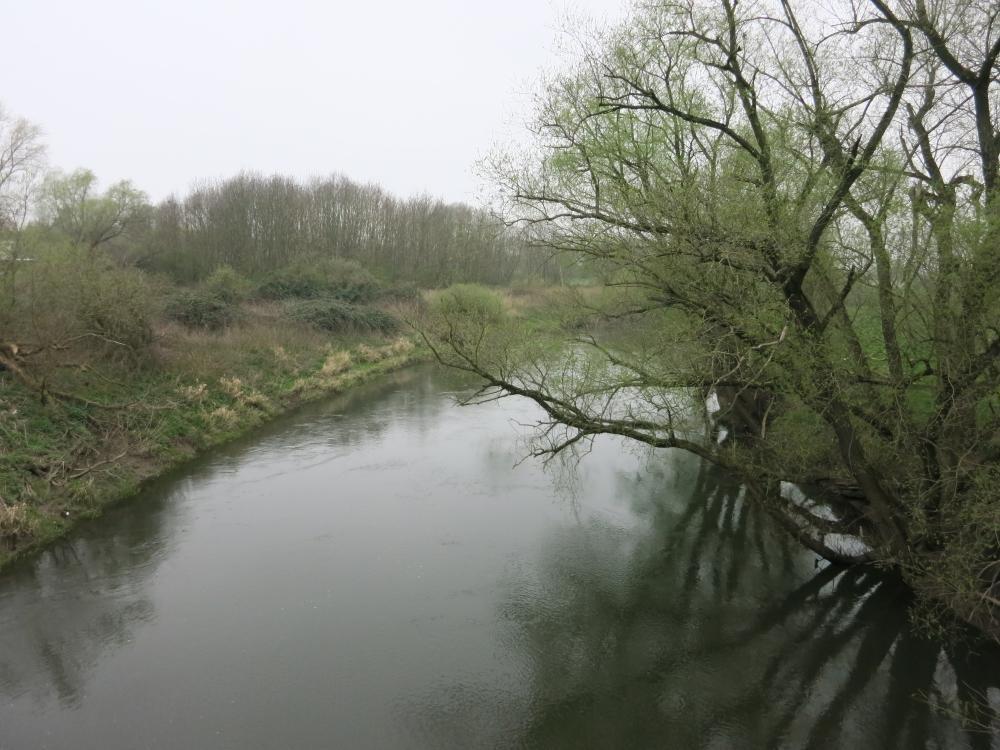 Blick auf den Fluss Leine von einer Brücke aus.