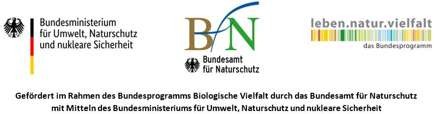 Ein Logo.