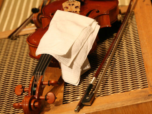 A violin (partly covered with a white cloth) and two bows.