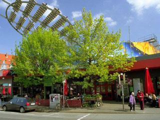 Außenansicht des Pavillons von der gegenüberliegenden Straßenseite aus.