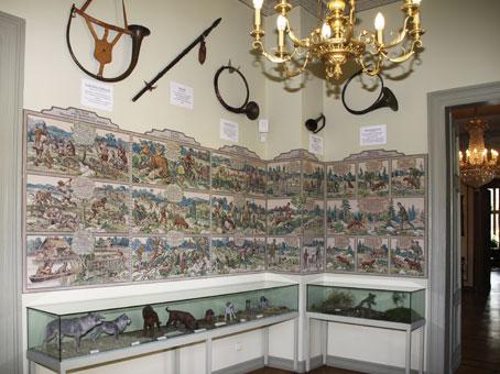 In einem der Räume des alten Jagdschlosses sind Vitrinen mit Hundemodellen sowie alte Schautafeln zu sehen.