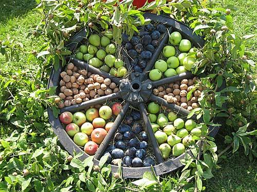 Wagenrad mit Obst
