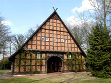 Typisch niedersächsisches Bauernhaus mit kahlen Bäumen um das Haus herum. Rechts vor dem Haus steht ein grüner Nadelbaum.