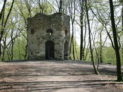 Wanderweg im Wald, der auf eine auf einem Hügel liegende Ruine zuführt
